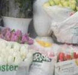 Prekyba gėlėmis