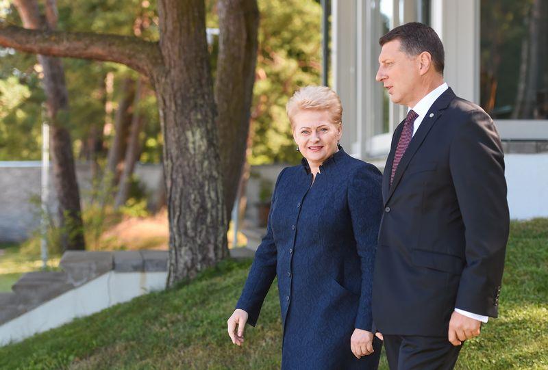 Dalia Grybauskaitė ir Raimondas Vejonis. Roberto Dačkaus (Prezidentūros) nuotr.