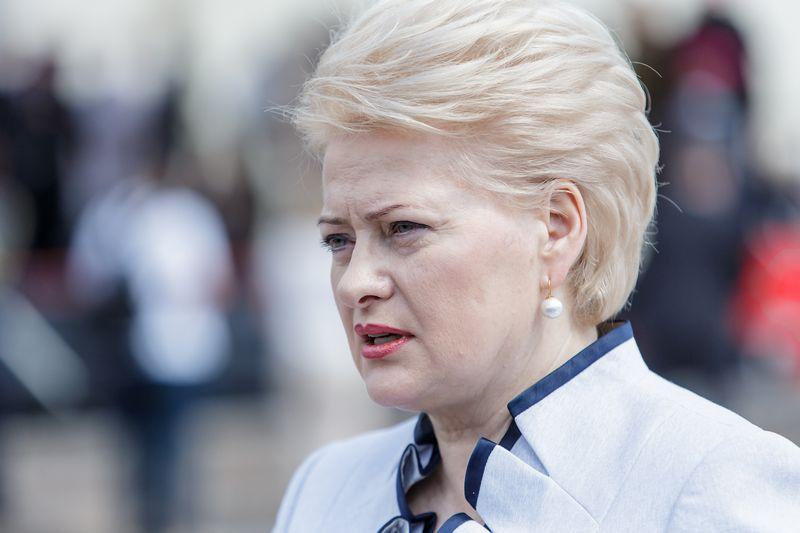 Dalia Grybauskaitė, prezidentė. Vladimiro Ivanovo (VŽ) nuotr.