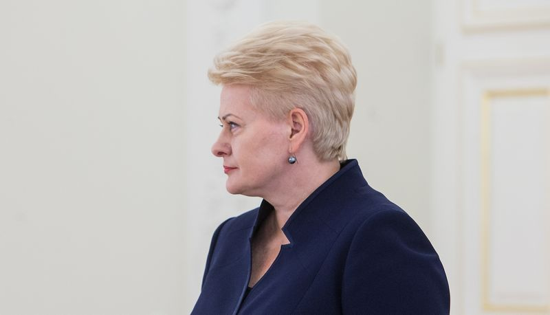 Dalia Grybauskaitė, Lietuvos Respublikos Prezidentė. Juditos Grigelytės (VŽ) nuotr.