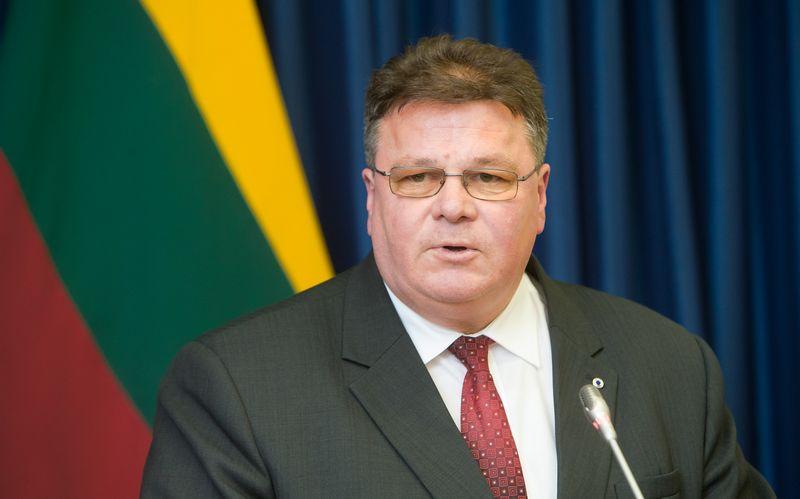 Linas Linkevičius, Lietuvos Respublikos užsienio reikalų ministras. Juditos Grigelytės (VŽ) nuotr.