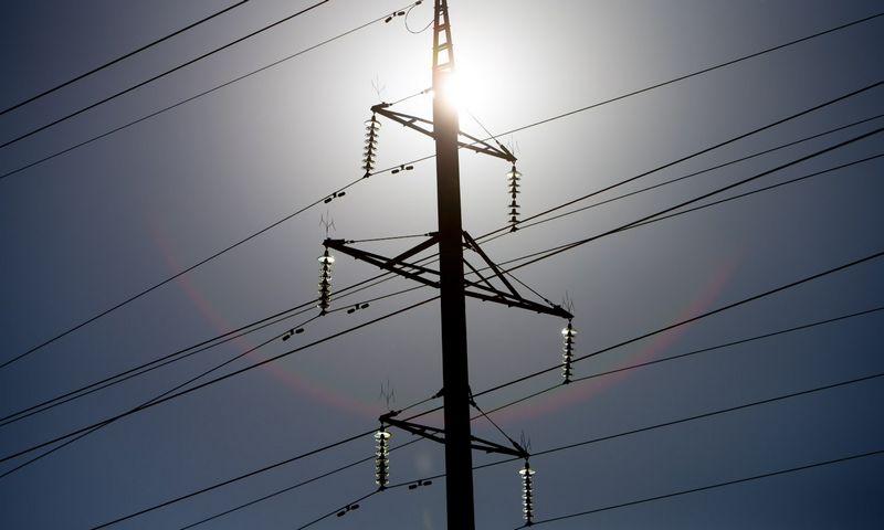 Elektros tinklas visada taikėsi prie vartotojų poreikių ir prie jų derino savo plėtros strategiją bei taktiką. Juditos Grigelytės (VŽ) nuotr.