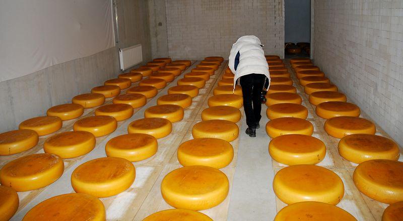 Lietuvos įmonės taip pat mėgina išlaikyti savo rinkos dalį leisdamos sūrius su savo prekės ženklais gaminti arba pačioje Rusijoje, arba juos įveža iš šalių, kurioms negalioja embargas, pavyzdžiui, Argentinos.  Arūno Milašiaus (VŽ) nuotr.