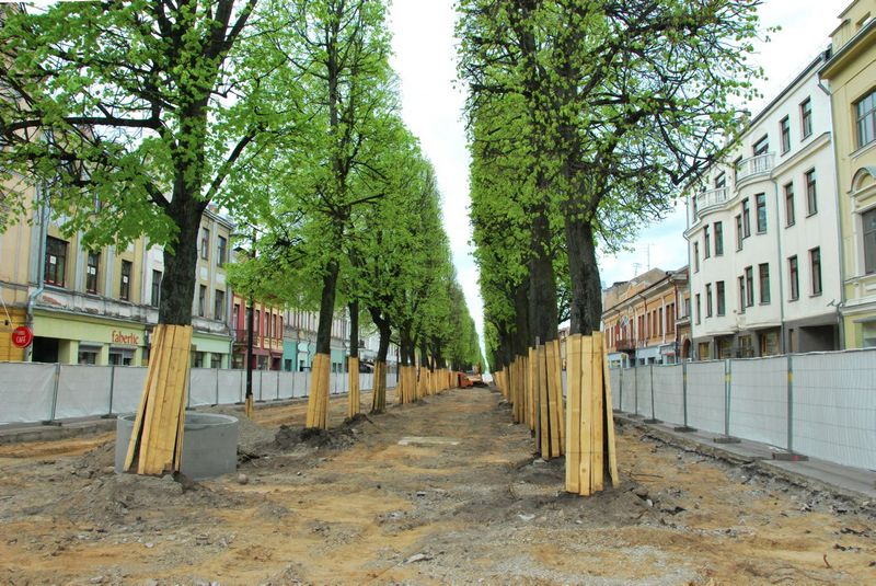 Kauno savivaldybė baiminasi, kad, gerokai sumažinus miestui paliekamą GPM dalį, gali sulėtėti dalis įgyvendinamų projektų, tarp jų – tik ką pradėta rekonstruoti Laisvės alėja.  indrės sesartės nuotr.