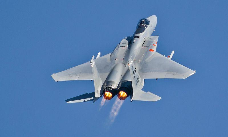 """F-15 Eagle"". ""Sipa"" / ""Scanpix"" nuotr."