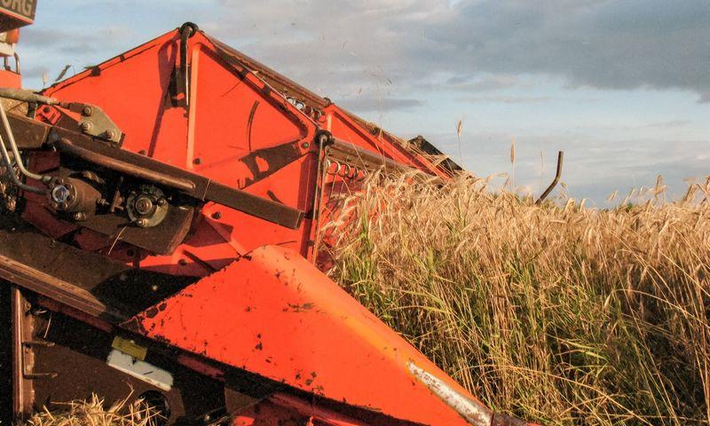 """""""Agrowill Group"""" atsiskaitė su kreditoriais ir toliaus kurs didžiausią Lietuvoje ekologiškų ūkių grupę. Vladimiro Ivanovo (VŽ) nuotr."""
