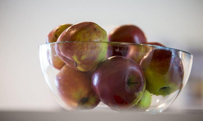 Nors ir galiojo embargas, pirmą šių metų pusmetį Lietuviai į Rytus išvežė 8 kartus daugiau obuolių nei prieš metus.  Vladimiro Ivanovo (VŽ) nuotr.