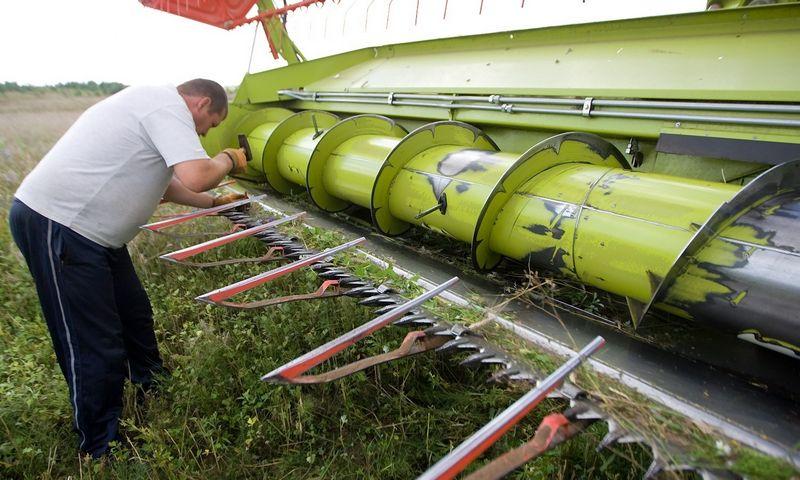 Ūkininkai priversti modernizuoti ūkius, nes, viena vertus, vis kokybiškesnių produktų reikalauja maisto perdirbėjai, kita vertus, auga derliaus kiekis, o kvalifikuotos darbo jėgos trūksta. Vladimiro Ivanovo (VŽ) nuotr.