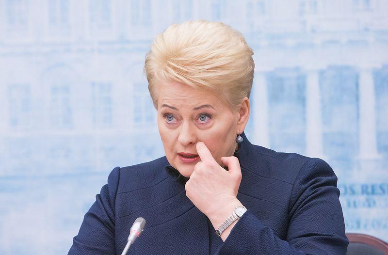 Dalia Grybauskaitė, prezidentė. Juditos Grigelytės (VŽ) nuotr.