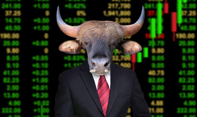 """Investicinį portfelį specialistai pataria sudaryti iš skirtingų turto klasių – nuo akcijų, obligacijų, investicinių fondų, iki nekilnojamojo turto (be pirmojo būsto). """"Matton"""" nuotr."""