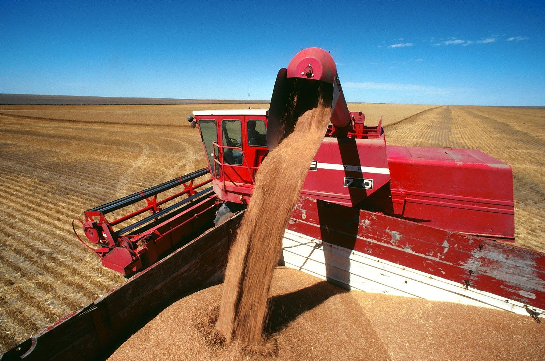 Rusai pakoregavo kvie�i� derliaus prognoz�