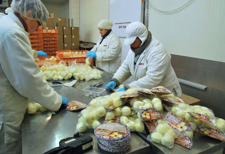 Augantis vietin�s rinkos apetitas didina �Judex� pajamas