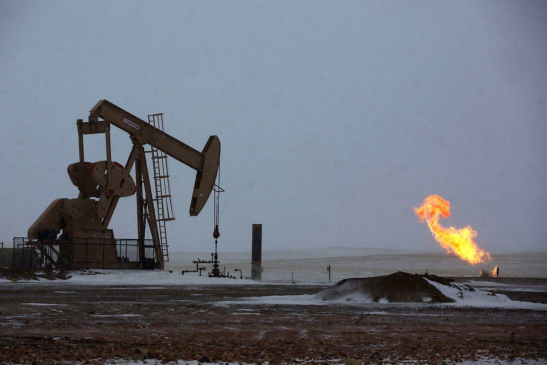 Nafta nebebus strateginis i�teklius