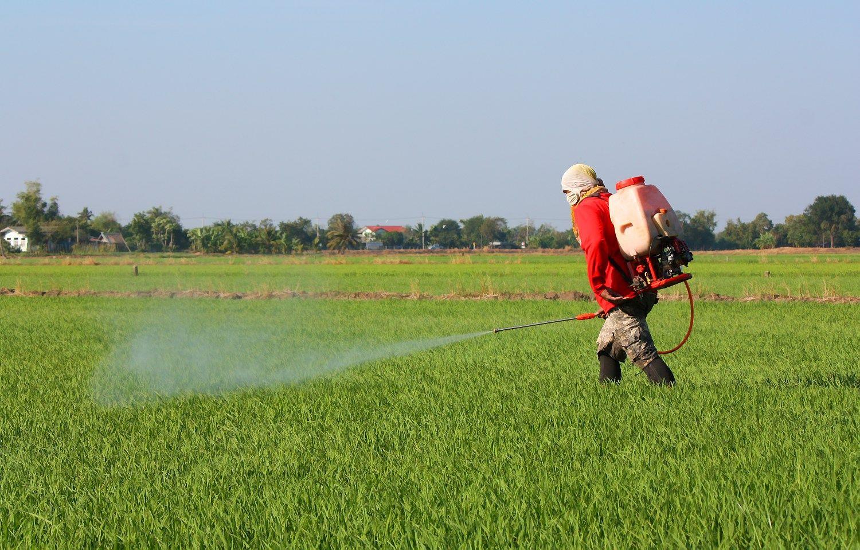 Ekologiniams �kiams gali leisti ir GMO, ir pesticidus