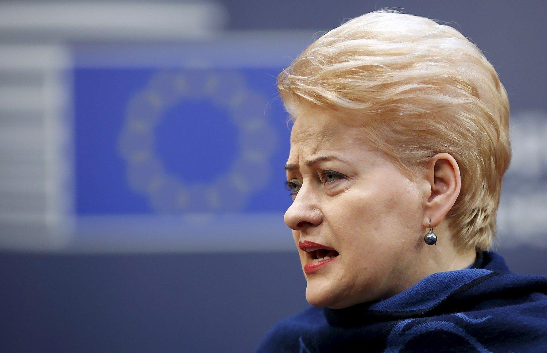 Grybauskait�: ES v�luoja pateikti saugumo sprendimus