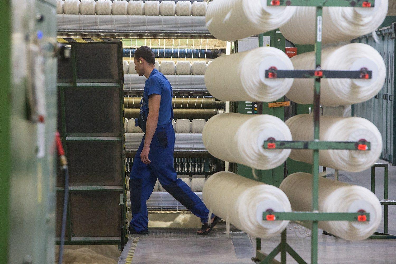 Pramonės produkcija augo 10,5%