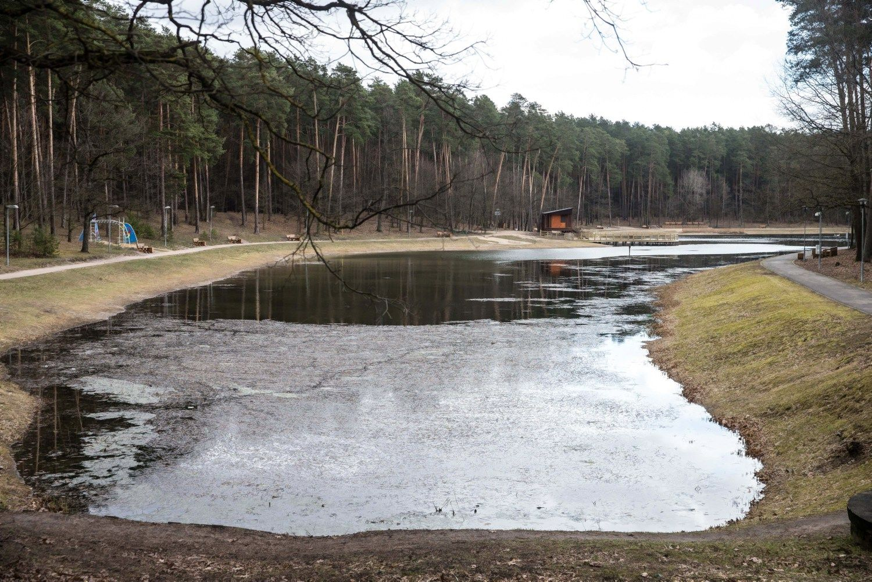 Alytus kviečia verslininkus teikti paslaugas prie Dailidžių ežerėlių