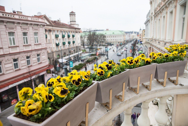 Naujas verslo centras Vilniaus Gedimino prospekte kviečia apsižvalgyti