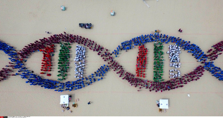 Sėkmingos įmonės DNR: ką rodo Lietuvos verslo pavyzdžiai