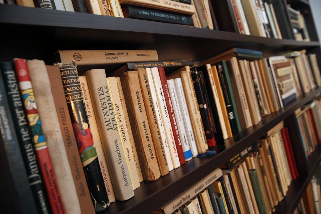V� rekomenduoja: savaitgalio knygos