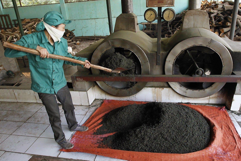 Kinijos arbatos mil�in� ateina � Lietuv�