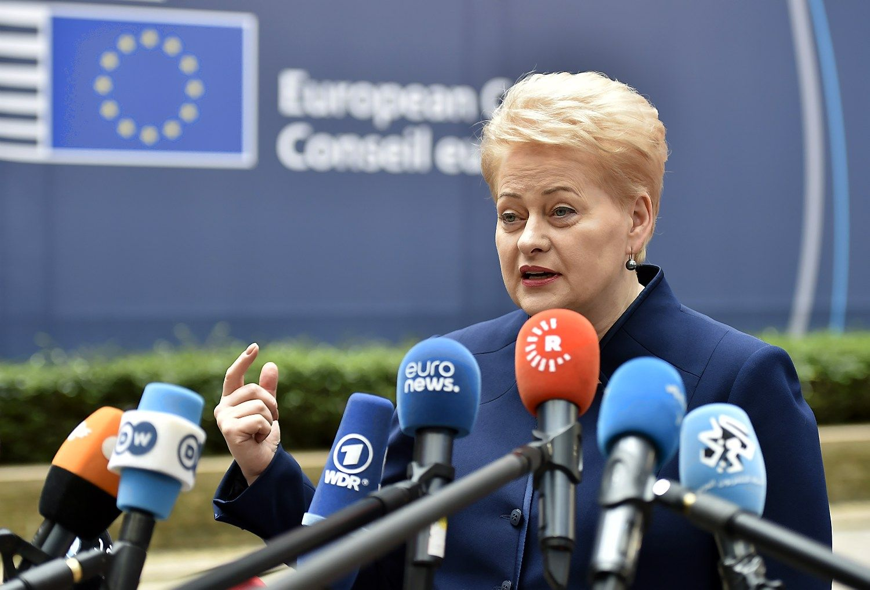 Grybauskaitė Briuselyje: metas atsibusti