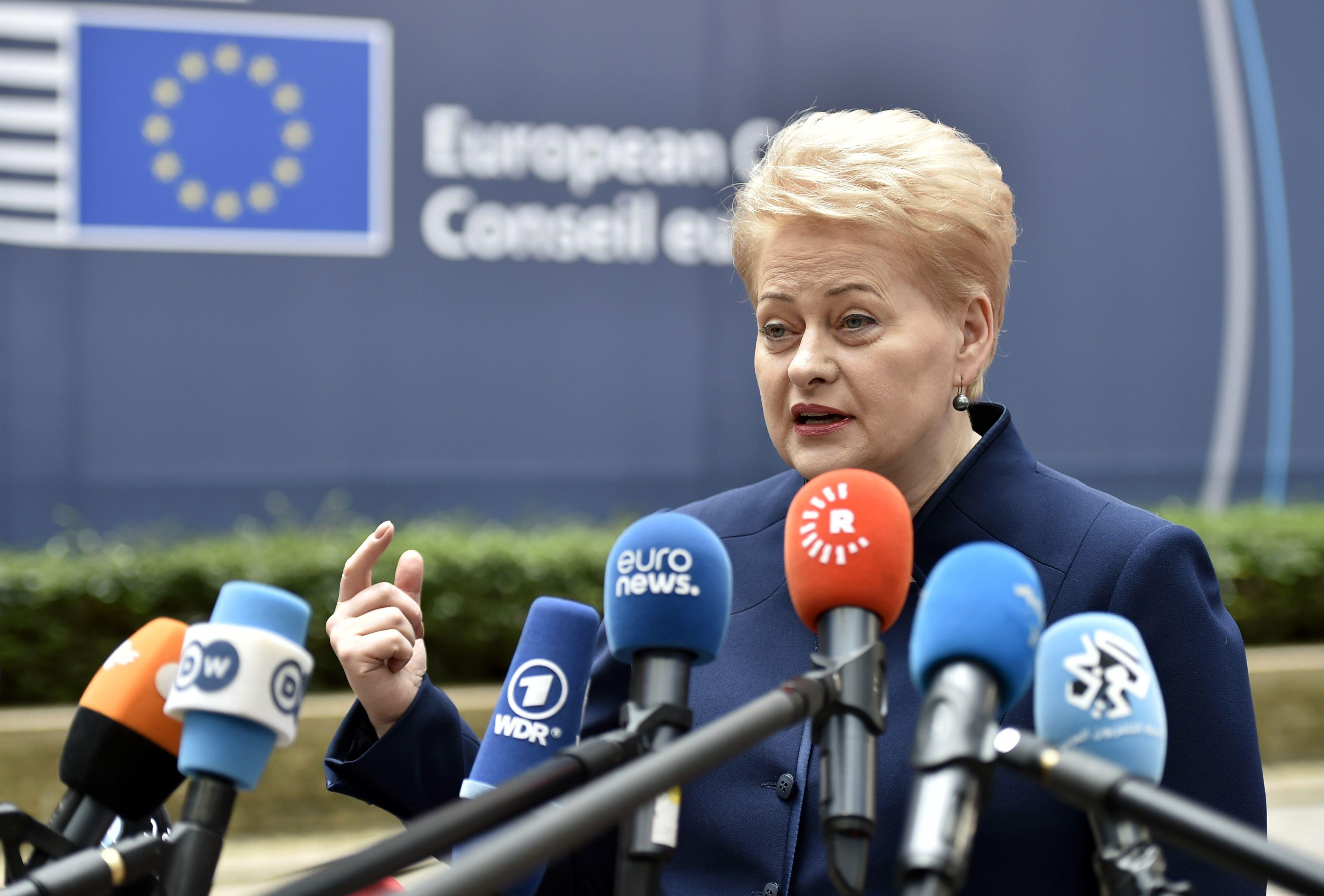 Grybauskait�: referendumas buvo klaida, bet jo negalima ignoruoti