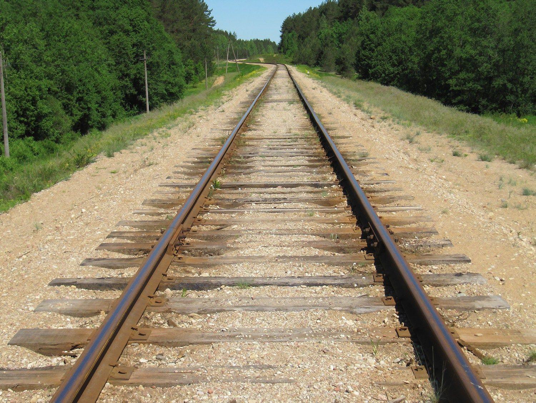 Geležinkelio linijos rekonstrukcijai –27,5 mln. Eur