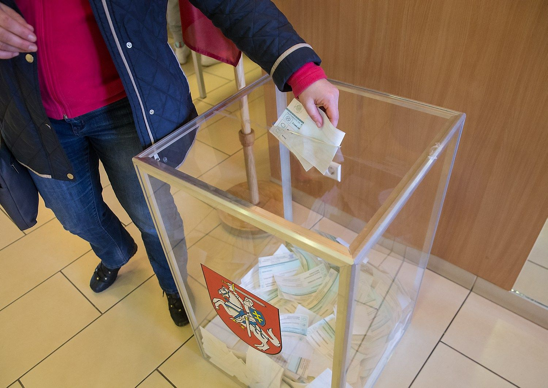 Vaigauskas pradeda kandidatų į Seimą surašymą