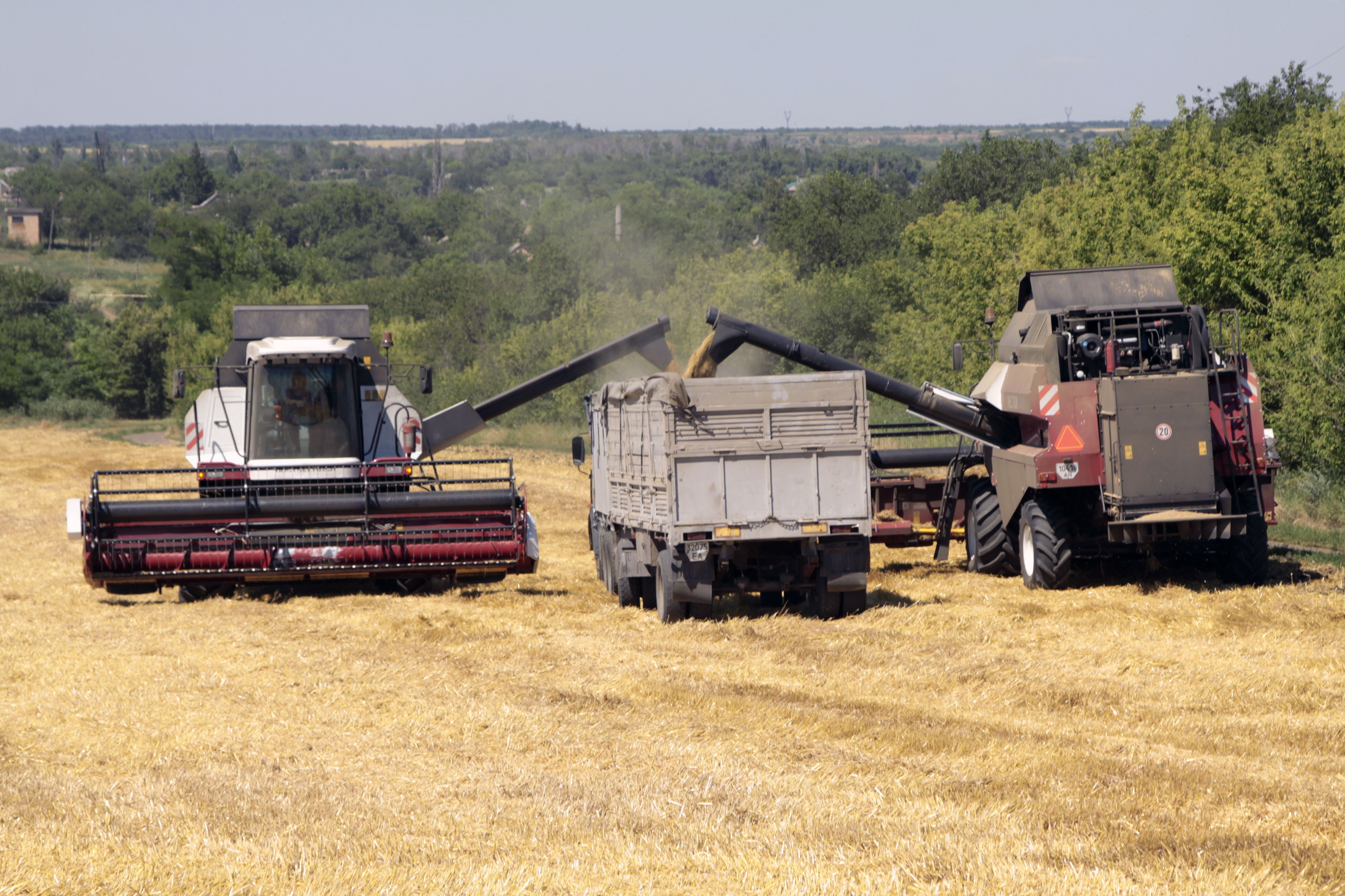 Russia Dominates Wheat Market as Soggy Fields Push Out France