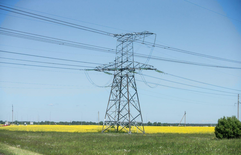 Elektros vartojimas šiemet augo 5,6%
