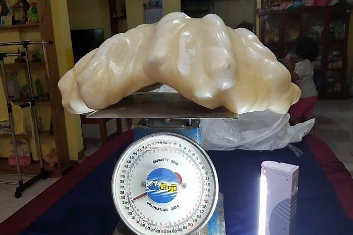 Rastas did�iausias pasaulyje perlas