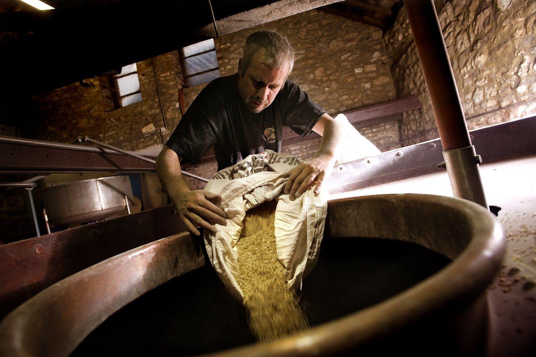 Dėl prasto miežių derliaus aludarių išlaidos didės