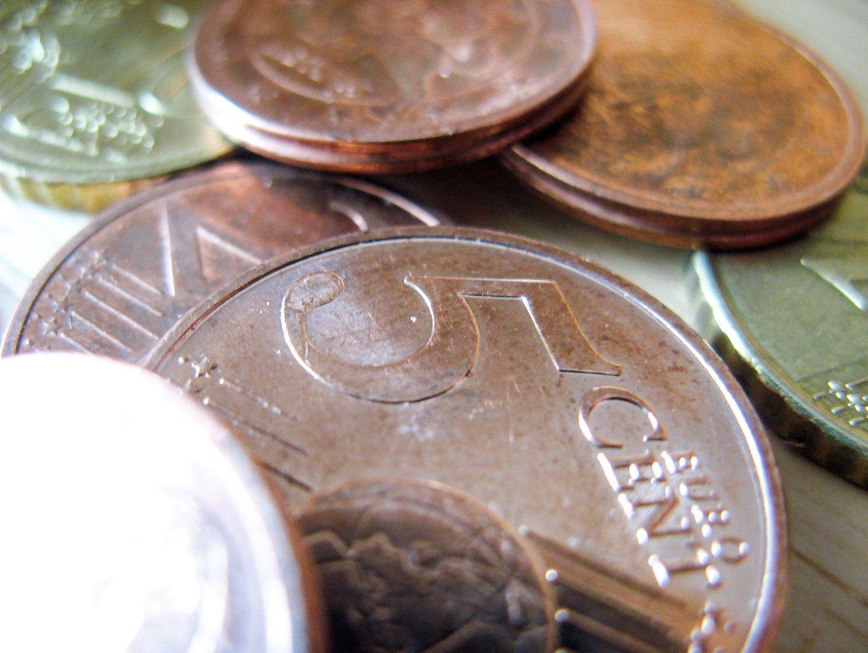 Lietuva pasiskolino 20 mln. Eur u� neigiamas pal�kanas