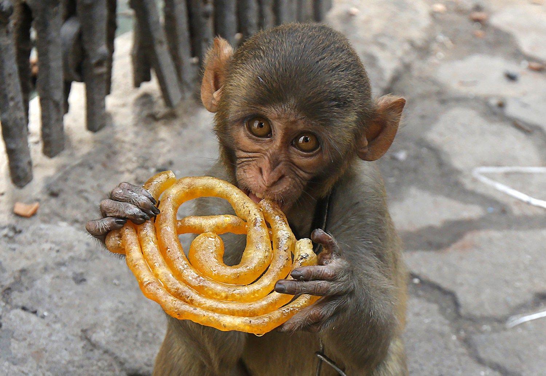 15 mitų apie maistą