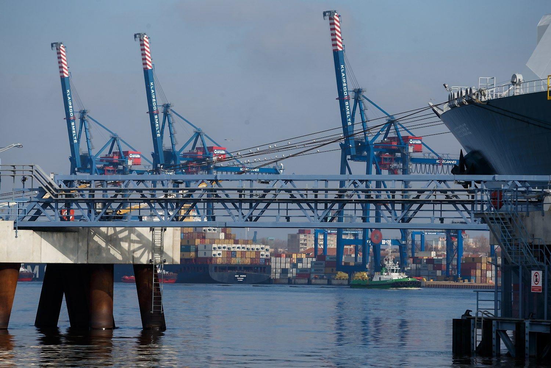 Prastesnis rugpjūtis bendram uosto augimui neatsiliepė