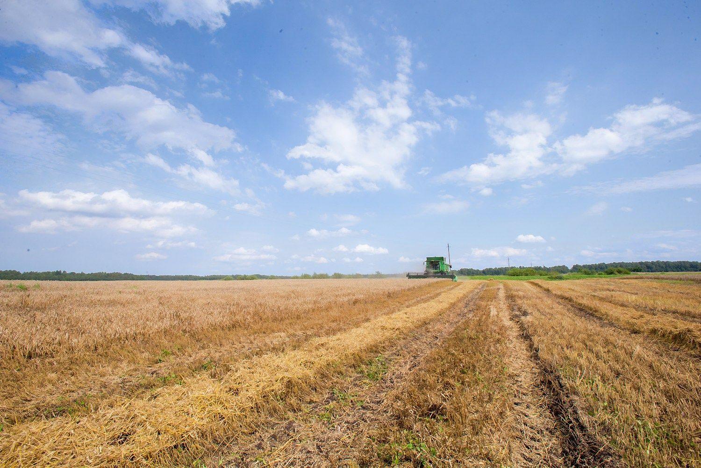 Nepritaria lengvatiniam PVM tarifui žemės ūkio kooperatyvų nariams
