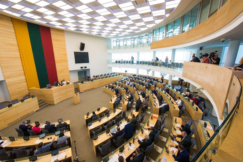 Kandidatų į Seimą deklaracijose – šimtai neatitikimų