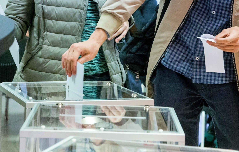 Išankstiniame balsavime jau dalyvavo bemaž 140.000 rinkėjų