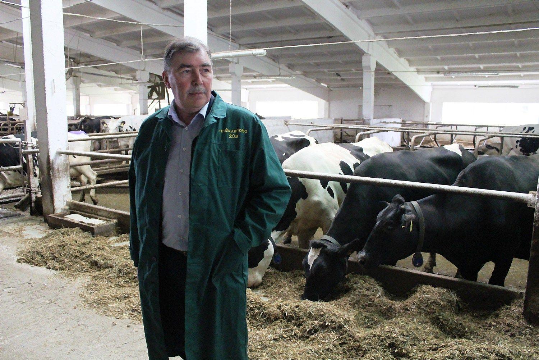 Pieno ūkiai jau pučia dulkes nuo investicinių projektų