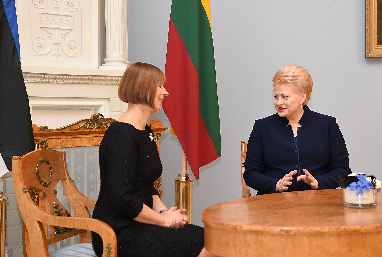 Grybauskait�: �Lietuvos gele�inkeliai� sabotuoja �Rail Baltic��