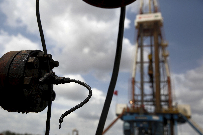 OPEC narių pozicijų išsiskyrimas smukdo naftos kainas