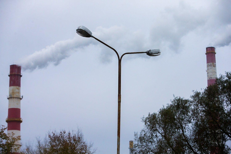ES parama atsinaujinan�iai energijai ��ir stambiai pramonei