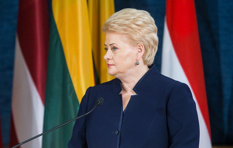 Grybauskait� patikino nedarysianti spaudimo d�l koalicijos sud�ties