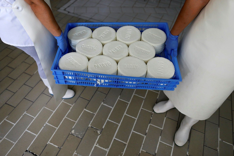 Pieno produktų kainų šuolis
