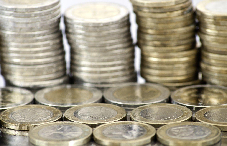 Biudžeto dotacija partijoms paskirstyta nepaisant naujausių Seimo rinkimų