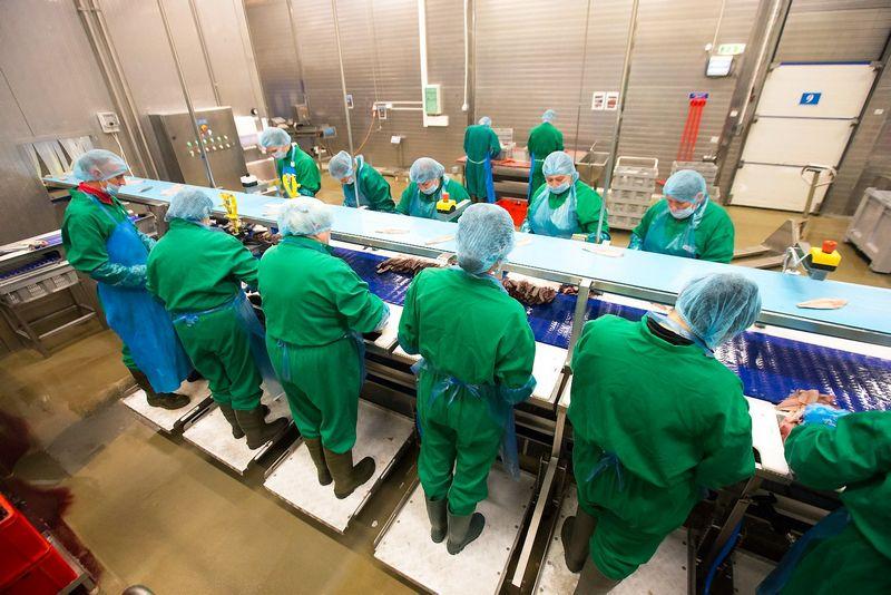 Daugiau darbuotojų – tokių planų turi beveik kas antra (43%) Lietuvos didelė įmonė, kurios apyvarta yra didesnė negu 20 mln. eurų. Juditos Grigelytės (VŽ) nuotr.
