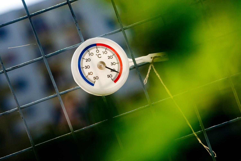 Lietuvos ūkio temperatūra kyla