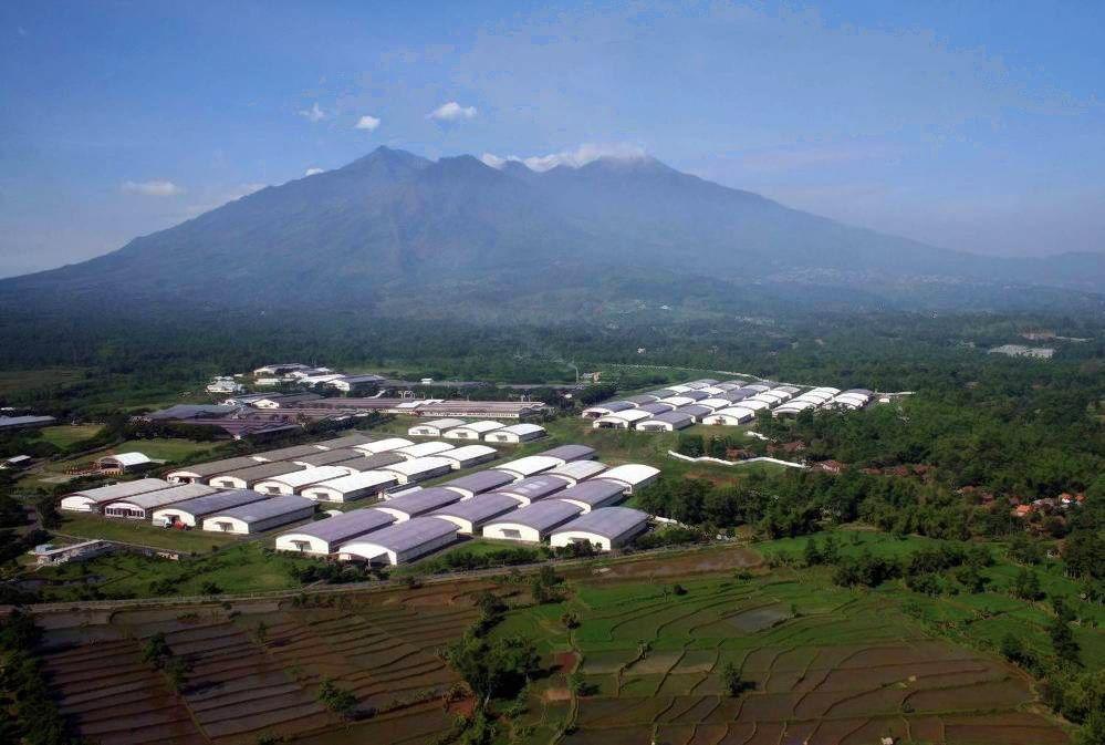 """Trumpaitis paskirtas """"Philip Morris"""" bendrovės Indonezijoje vadovu"""