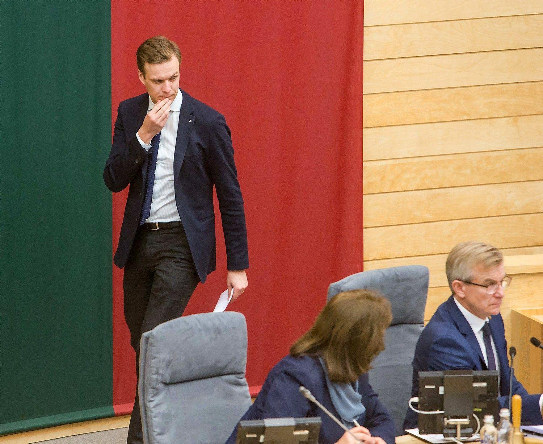 Landsbergis ragina kuo greičiau surengti naujus partijos lyderio rinkimus